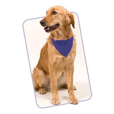 Bandana Collar Mascotas
